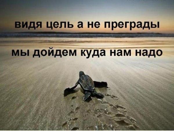 734672_514674598584736_1779559332_n.jpg