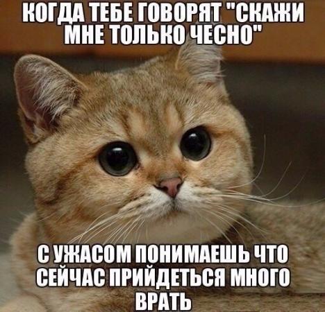 nvQOqthr7Y4.jpg