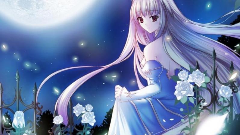 a-night_garden-1388665.jpg