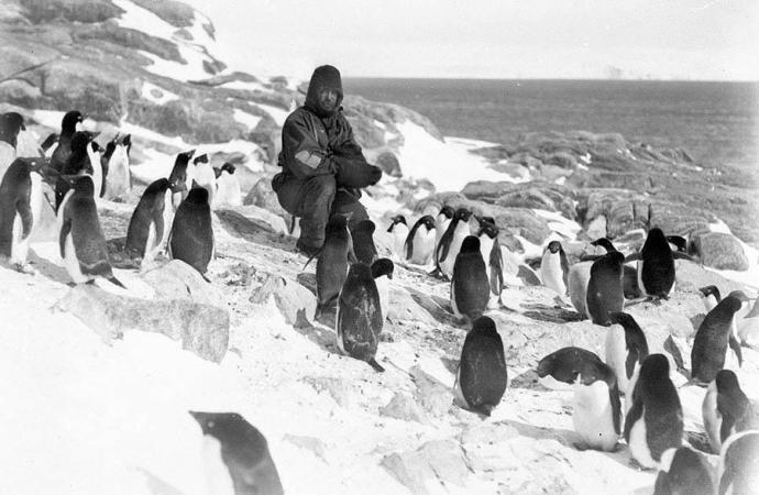 antarctica09.jpg
