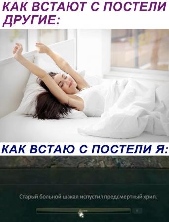 1601108977127786066.jpg